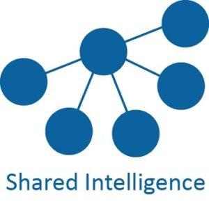 Shared Intelligence logo